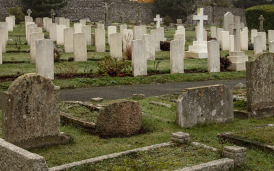 Dead Ringers Remembered (3)