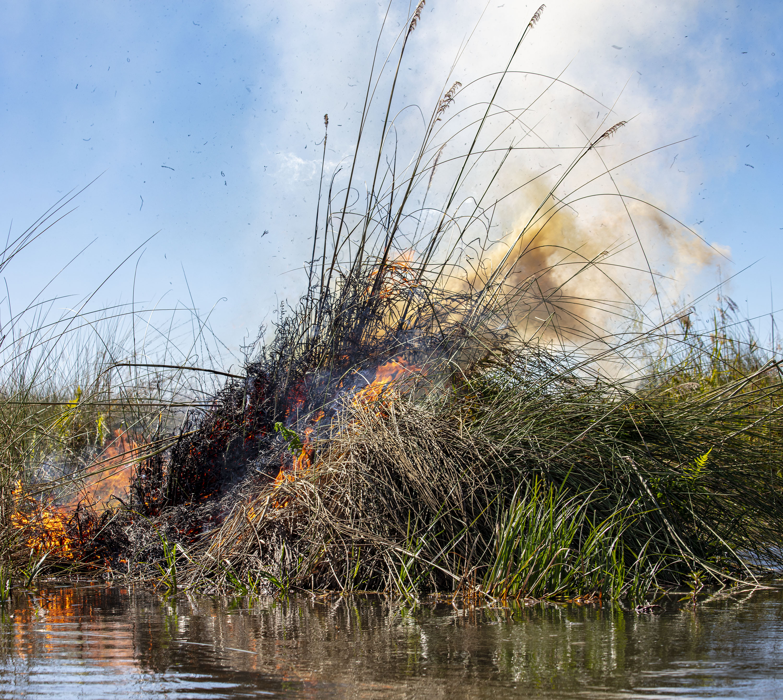 In Botswana Tourism Matters | PatrickGoff com