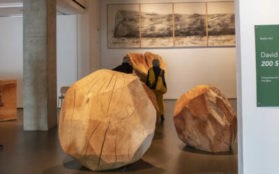 Log-In at the Towner